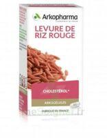Arkogélules Levure de riz rouge Gélules Fl/45 à SAINT-VALLIER