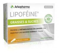 Lipofeine Graisse et Sucres Gélules B/60 à SAINT-VALLIER