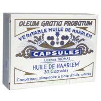 Huile de Haarlem B/30 à SAINT-VALLIER