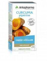 Arkogelules Curcuma Pipérine Gélules Fl/45 à SAINT-VALLIER