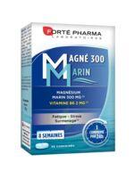 Magné 300 Marin (2 mois) à SAINT-VALLIER